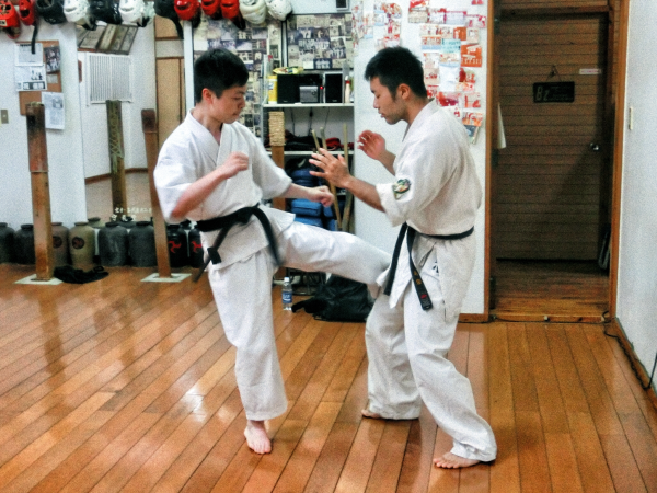 Okinawa Uechi Ryu Karate Iron Body Legs conditioning Kashi-kitae
